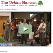 Urban-Harvester-webpage-screenshot-2016-06-15-3years-300616-reads