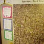 Fernwood Fruit tree